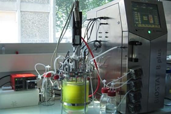 Formation en biotechnologies par la voie de l'apprentissage