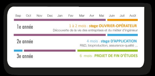 Calendrier Examens Bordeaux Montaigne.Biotechnologies Enstbb