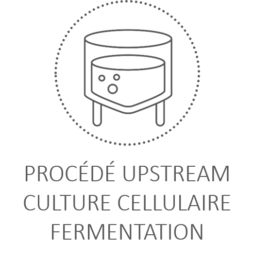 thematique_bioproduction.png